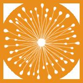 171x_burst_orange